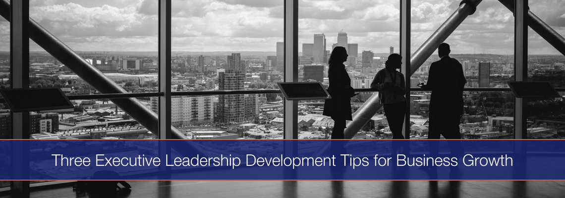 Executive Leadership Development